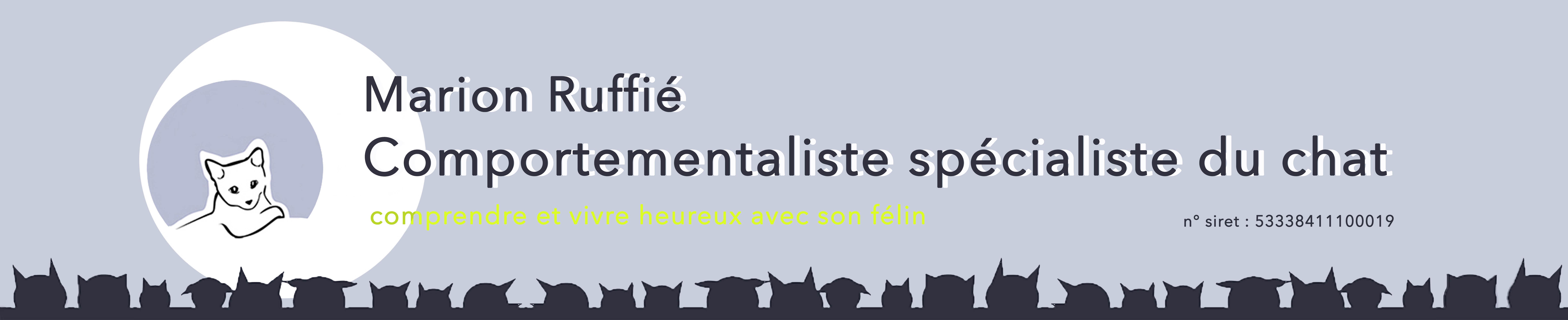 Comportementaliste chat Paris_ Marion Ruffié